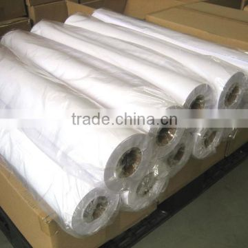 Roll Glossy Photo Paper In Large Format For Memjet Printer