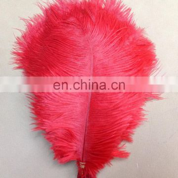 professional supplier Chrismas ostrich feather decorations