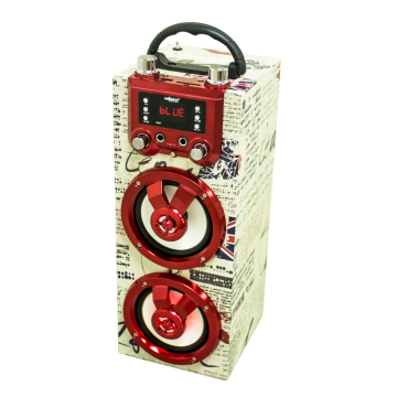 BT Wooden Power Karaoke Speaker with Colorful Display and LCD Screen