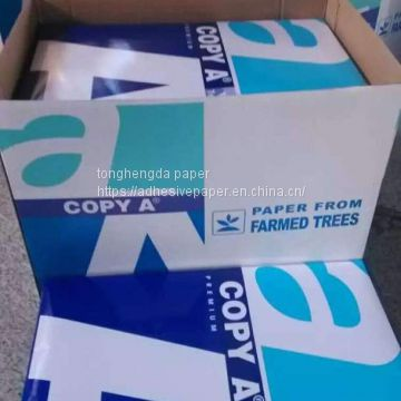 label printing material roll
