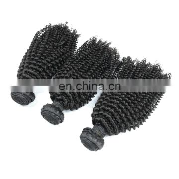 Fast shipping 100% brazilian human virgin hair weaving in kinky curl raw unprocessed hair