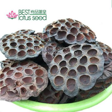 Dried Natural Arrangements Decoration Lotus Seedpod Head Shell Herbal Medicine Wholesaler Exporter Supplier