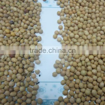 Engineer oversea service available soybean CCD color sorter
