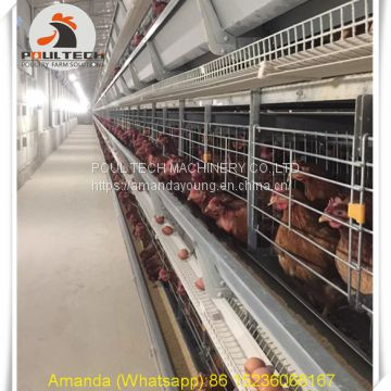 Ethiopia Poultry Farming - Battery Chicken Cage & Layer Cage & Chicken Coop & Laying Hen Cage in Chicken House