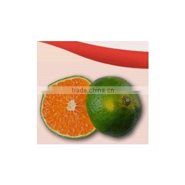 Aseptic Dalandan Puree of Food Products from China Suppliers