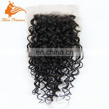 Peruvian Ombre Hair Extensions With Closure 1pc Lace Closure With 3pcs Ombre Hair Bundles Virgin Human Kinky Curly Hair