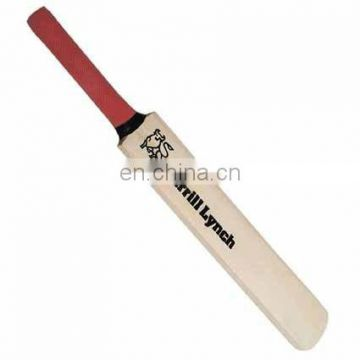 Children Cricket Bat