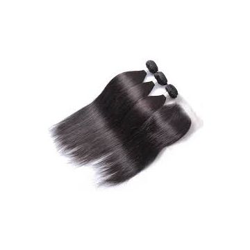 Front Lace Human Natural Straight Hair Wigs Malaysian No Shedding Fade