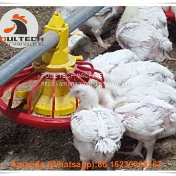 Colombia Chicken House Poultry Farming Equipment Broiler Floor Raising System & Chicken Deep Litter System with Automatic Drinking & Feeding Pan System in Chicken Coop