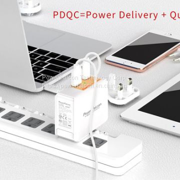 PowerFalcon 45W PD dual port (USB-C+USB-A) charger / interchangeable