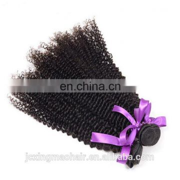 Express Wholesale Price 20 Inch Long Indian Afro Kinky Curly Bulk Human Hair