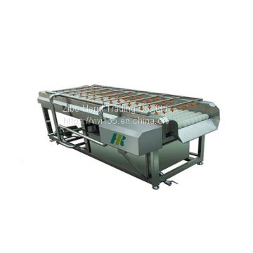 Carrot /Pineapple / pear/ potato washing machine for industry