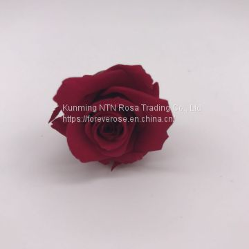 Customized Longlasting Preserved Rose Preserved Flowers for festival days