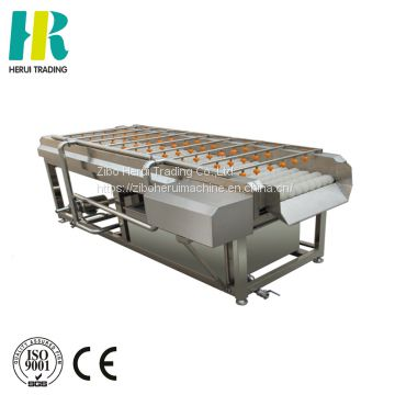 Brush roller carrot washing and polishing machine