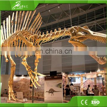 Theme park dinosaur skeleton model fossil