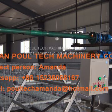Qatar Poultry Farming Hot Galvanized Cage Automatic