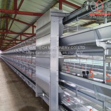 Lesotho Poultry Farming Automatic Broiler Cage & Meat Chicken Cage & Chicken Coop in Chicken Shed