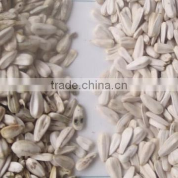 Sunflower Seeds Color Sorter/Grain Color Sorting Machine With 5388 Pixel