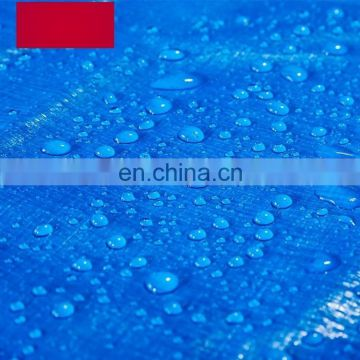Best Sellers Products HDPE Plastic Tarpaulin