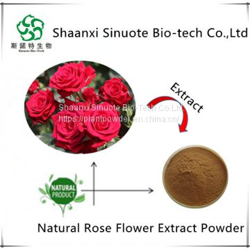 100% Nature Plant Extract Rose Flower Extract