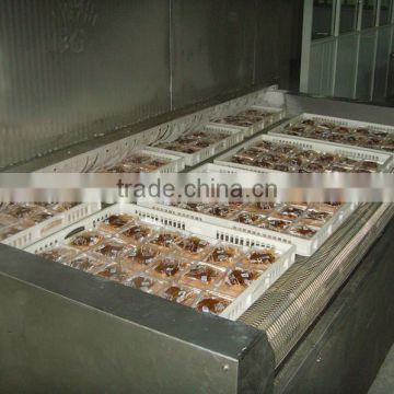 Food Tunnel Freezer
