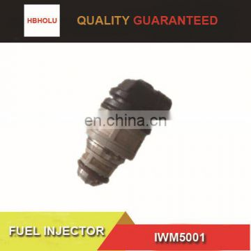 FIAT Renault Fuel injector nozzle IWM5001 with high quality