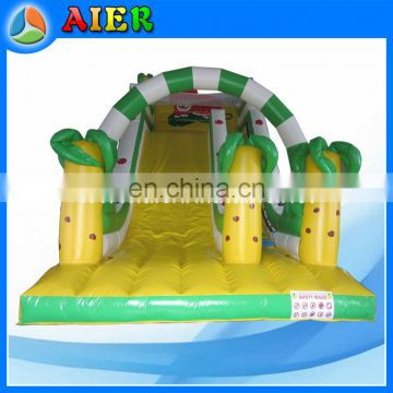 Commercial grade tiger inflatable dry slide