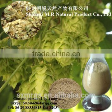Pure Hops Flower Extract Powder 20:1 Flavone