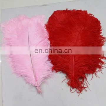 Wholesale South Africa ostrich feathers for decoration wedding ostrich feathers
