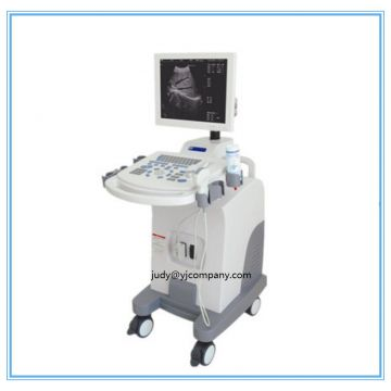 Cheap trolley ultrasonic Scanner for obsterics B Ultrasound