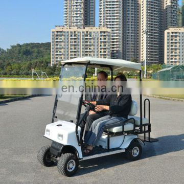 1 seater Electric golf carts with rain curtain, Custom electric golf car