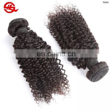 Wholesale Price Virgin Human Totally Unprocessed 100% Virgin Brazilian Hair Bundles