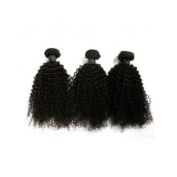 No Chemical Brazilian Curly Grade 7A Human Hair Natural Real