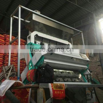 watermelon seeds color sorter/color sorting machine for watermelon seeds