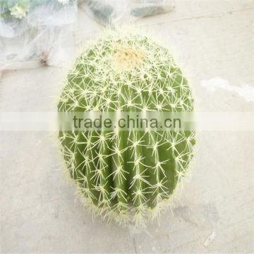 SJM091005 High-quality decoration artificial hoodia cactus/opuntia dillenii haw