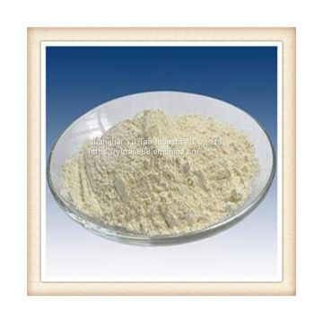 9000-36-6 Sycamore gum99% White to yellowish powder. Slightly sour sour taste