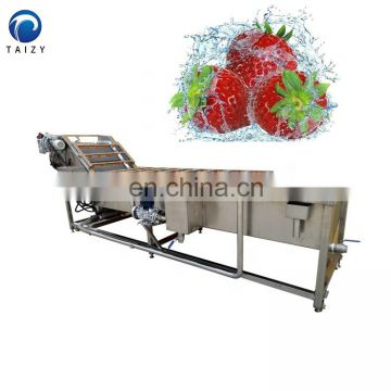 fruit cleaning machine fruit and vegetable cleaner leaf vegetable washing machine