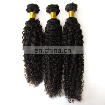 2017 hot sale kinky curly wholesale indian hair in india
