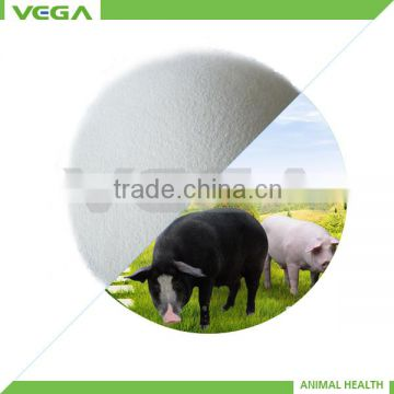 Manufacturer Directory Vitamin C Manufacturers coated ascorbic acid /vitamin c supplier with competitive price china manufactuer