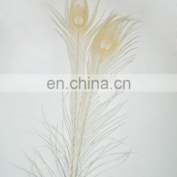 hot selling white natural 80cm-90cm peacock feather