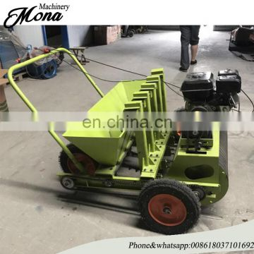 Garlic Seed planter/garlic planting machine/garlic seeder