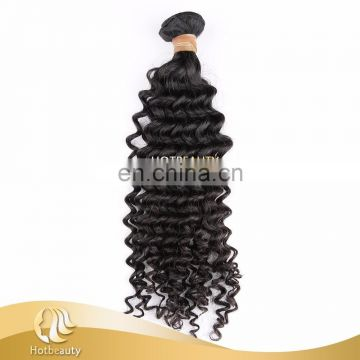 Brazilian unprocessed raw virgin water wave human wig hair