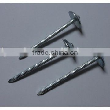 "1.5""*14G large Head smooth plain Shank Roofing Nail china factory"