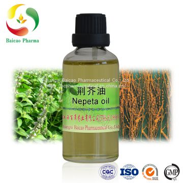 Pure Essential Oil Factory Price Organic Nepeta Essential Oil