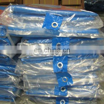 Ready made high quality polyethylene tarpaulin,customized polyethylene tarpaulin