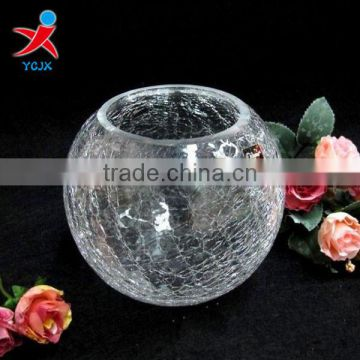 European creative glass vase/cut flower in different container/Contracted home decorations/The sitting room handicraft furn