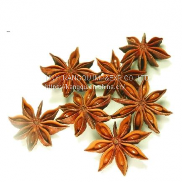 Chinese star anise,anise
