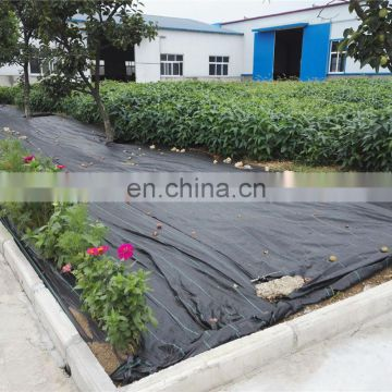Black PP Weaving Ground Weed Control Barrier Mat for Agriculture