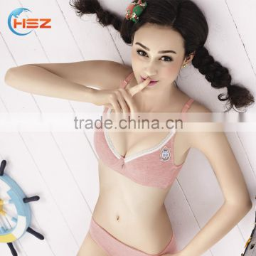 78c9f41ddcad HSZ-2234 Wholesale Sexy Undergarments For Ladies Fancy Bra Panty Set  Special Design Hot Girls Photo New Model Bra Women Lingerie of Bra sets  from China ...
