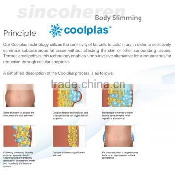 CE / FDA approved 3 cryo handles weight loss fat reduction cool fat freeze cryo machine price